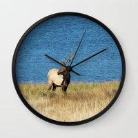 elk Wall Clocks featuring Elk by Becca Buecher