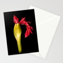 Flower Fall Stationery Cards