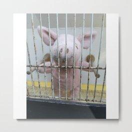 Toy piglet behind bars Metal Print
