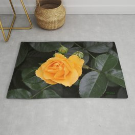 "A Rose Named ""Julia Child"" Rug"