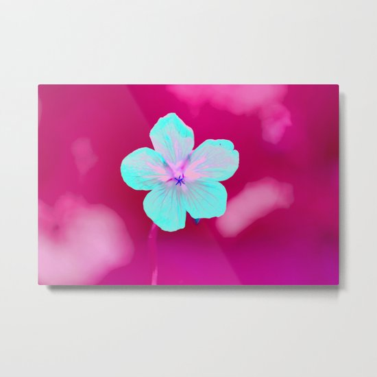 Colorful Flower #1  Metal Print