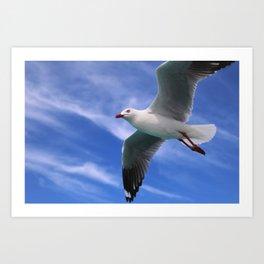 Fly high Art Print