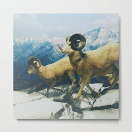Museum Wildlife Metal Print