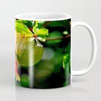 pomegranate Mugs featuring pomegranate by  Agostino Lo Coco