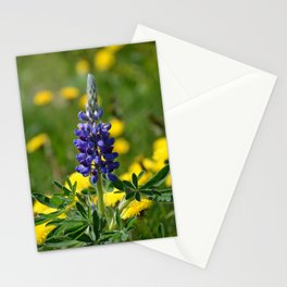 Stand-Alone Stationery Cards