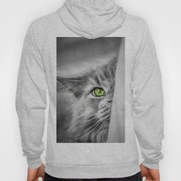 Small brother is watching you (b&w) Hoody