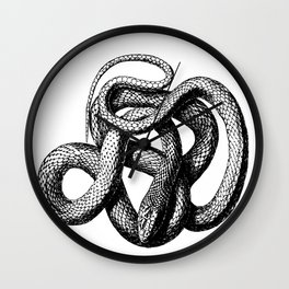 The Snake Wall Clock