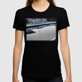 Winter Might Frost (Kyoto) T-shirt