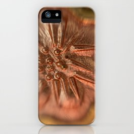 Microscopic Experimental photography gold rose jewelry flower iPhone Case