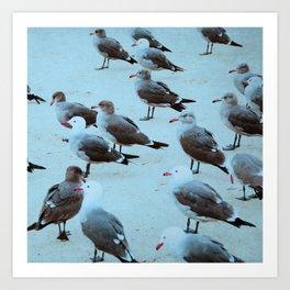 Beach Birds Blue Art Print