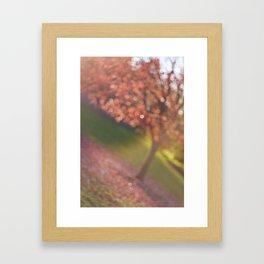 a hint of fall Framed Art Print