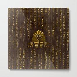 Golden Egyptian Sphinx and hieroglyphics on wood Metal Print
