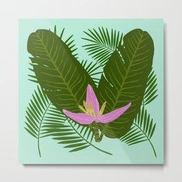 Tropical banana flower Metal Print