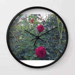Huntington Roses: I Wall Clock