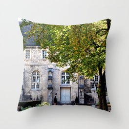 Archaeology Throw Pillow