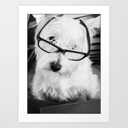 Really? Cute Westie Dog Wearing Glasses Art Print