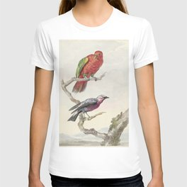 Tropical Bird Illustration - 18th Century T-shirt