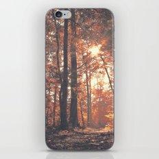 Precious Autumn iPhone & iPod Skin