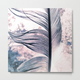 Details of a feather against light blurry background duotone Metal Print