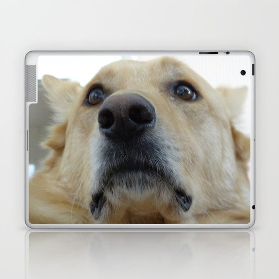 Indian Dog Laptop & iPad Skin