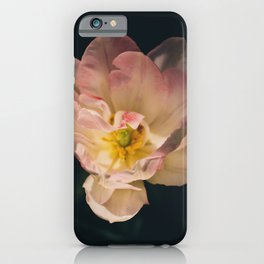 Among others iPhone Case