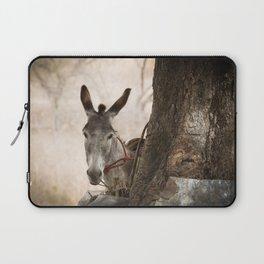 The curios donkey Laptop Sleeve