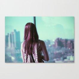 The world beyond Canvas Print