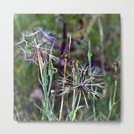 Summer Meadow with Wild Flowers Metal Print