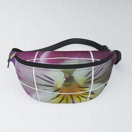 Partitioned Pansy Fanny Pack