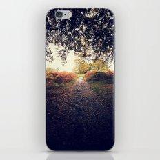 Path III iPhone & iPod Skin