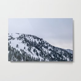 Monochrome Winter Metal Print