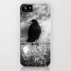 Nevermore iPhone (5, 5s) Slim Case
