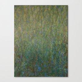 Raining Wisteria Canvas Print