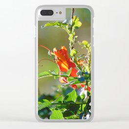 Morning Sunlight Clear iPhone Case