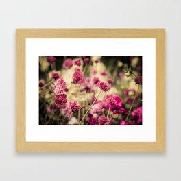 Flowers in Paris 2 Framed Art Print