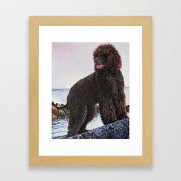 Irish Water Spaniel dog art from an original painting by L.A.Shepard Framed Art Print
