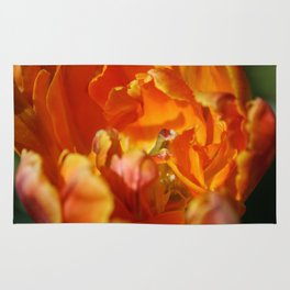 Parrot Tulip by Mandy Ramsey Rug