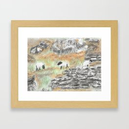Sheep by the Wall Framed Art Print
