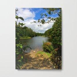 Algonquin Lake Metal Print