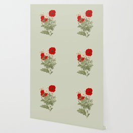 A country garden flower bouquet -poppies and daisies Wallpaper