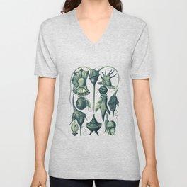 Ernst Haeckel Peridinea Plankton Algae Teal Unisex V-Neck