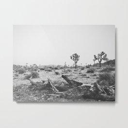 JOSHUA TREE VIII Metal Print