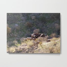 Busted and rusty Metal Print