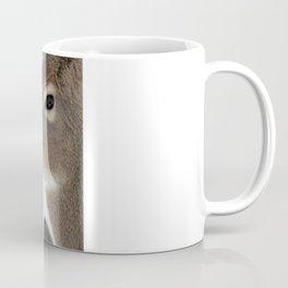 Chevreuil 004  Coffee Mug