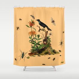 Halloween and entomology Shower Curtain