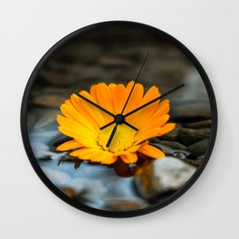 Flower Photography by amirali mirhashemian Wall Clock