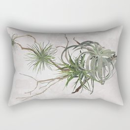 Air Plant Succulent Rectangular Pillow