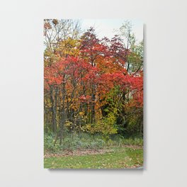 First Things First Metal Print