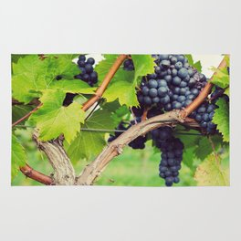 Red Wine Grapes Rug