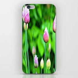 Flowering Chives iPhone Skin